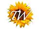 logo_260_66382416